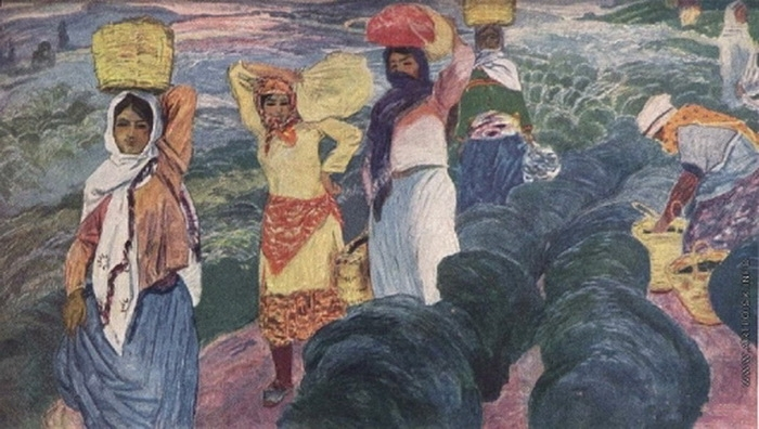 Микаил Абдуллаев. «Сбор чая в Астаре»