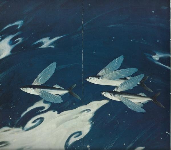 Рюси Кавабата «Тёплое морское течение Куросио» ширма 168х168 1932 г. (левая часть)